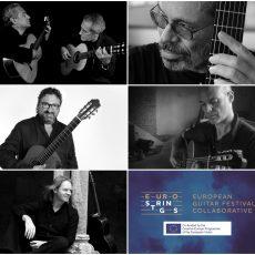 ambassadors-eurostrings